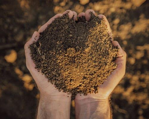 Quality Soil!