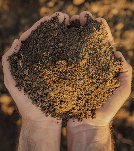 Rutherford Soil - Image